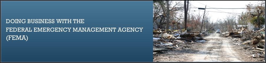 FEMA gov